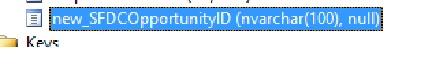 SQL_AttributeMettaData4